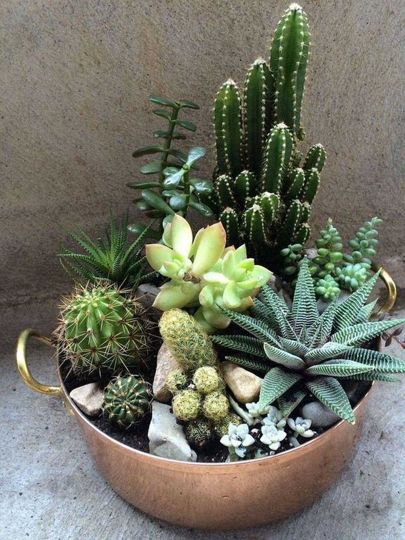 Inspiring Indoor Garden Succulent Ideas 27