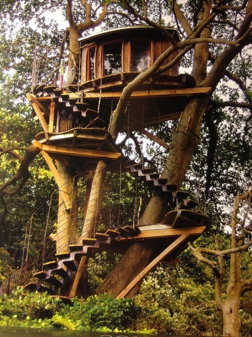 Stunning Tree House Designs You Never Seen Before 16