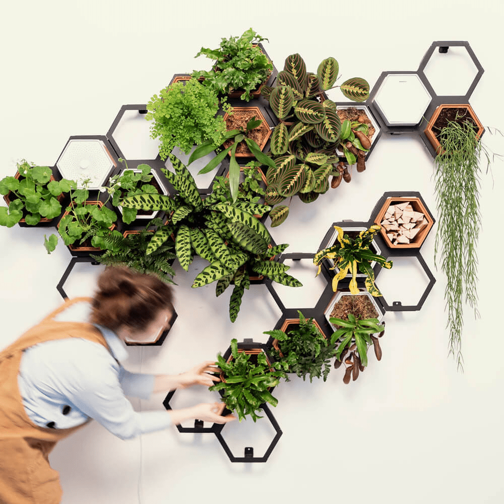 Beautiful Living Wall Indoor Decoration Ideas To Be A Fresh Home 18