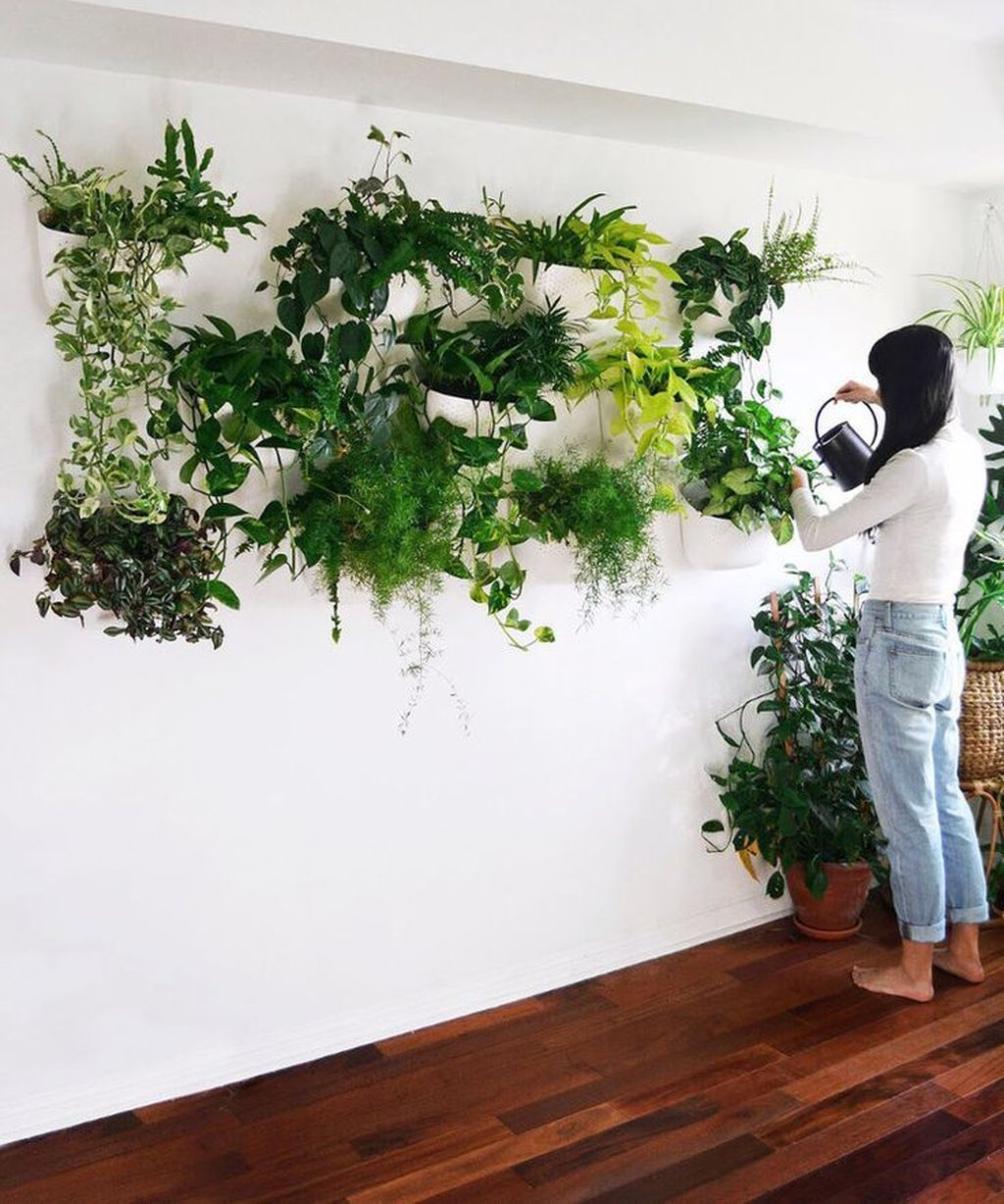 Beautiful Living Wall Indoor Decoration Ideas To Be A Fresh Home 23