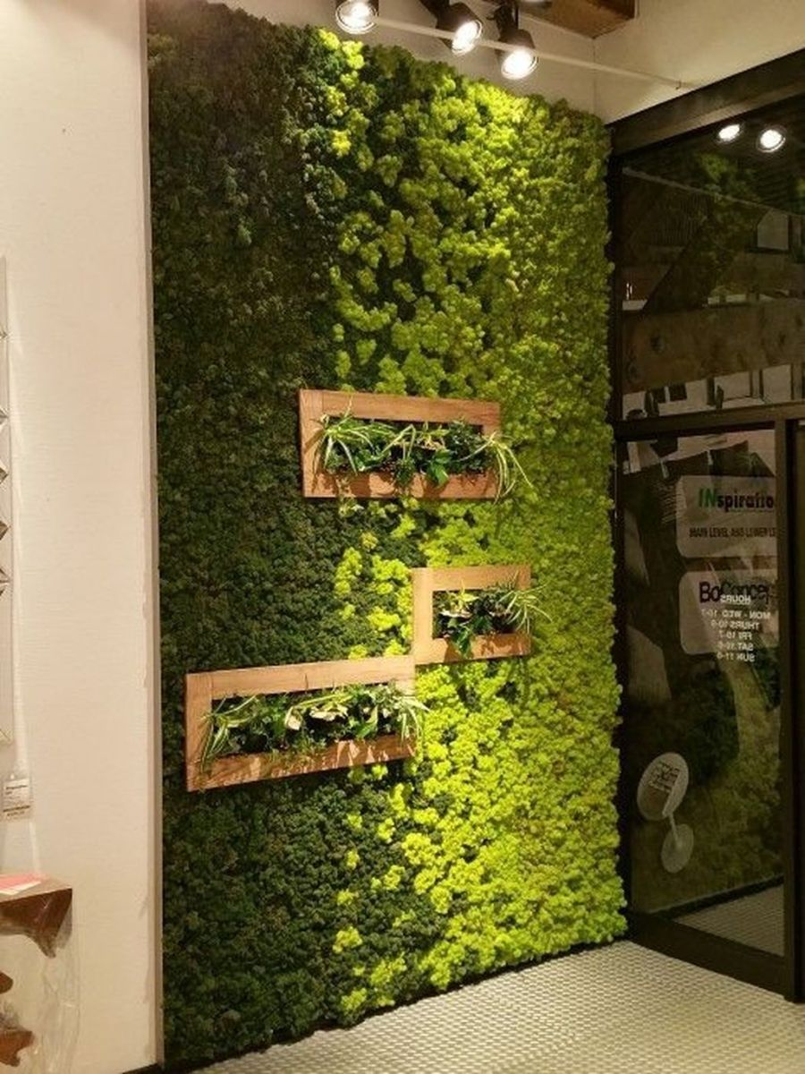 Beautiful Living Wall Indoor Decoration Ideas To Be A Fresh Home 29