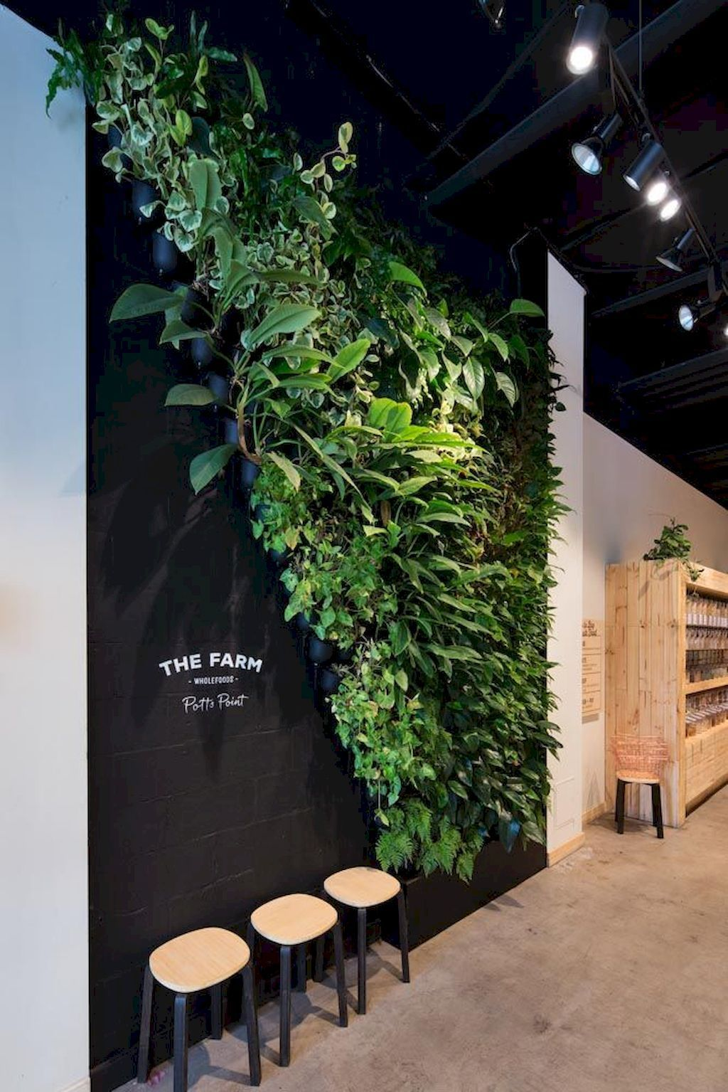 Beautiful Living Wall Indoor Decoration Ideas To Be A Fresh Home 35