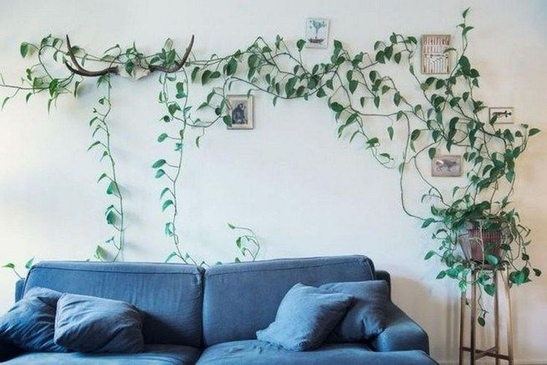 Beautiful Living Wall Indoor Decoration Ideas To Be A Fresh Home 36