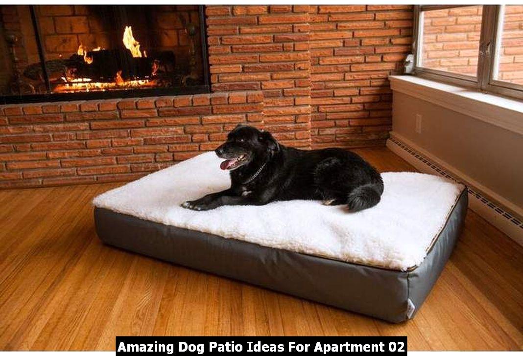Amazing Dog Patio Ideas For Apartment 02