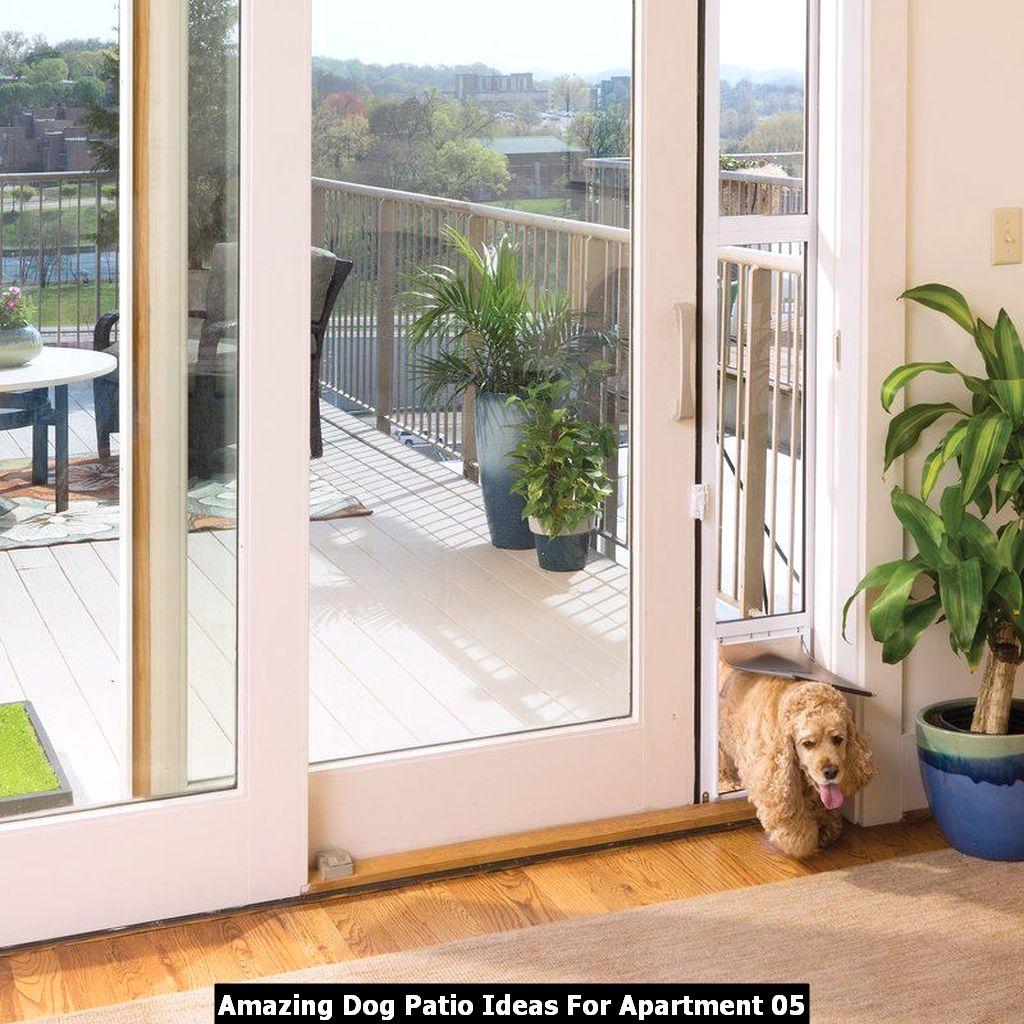 Amazing Dog Patio Ideas For Apartment 05