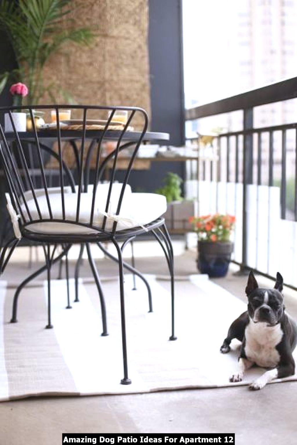 Amazing Dog Patio Ideas For Apartment 12