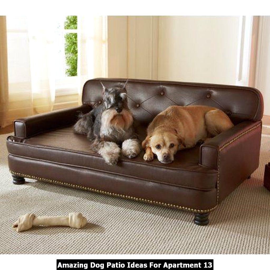 Amazing Dog Patio Ideas For Apartment 13