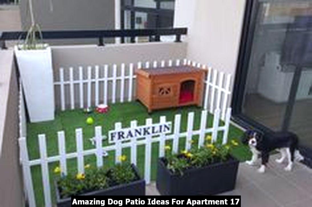 Amazing Dog Patio Ideas For Apartment 17
