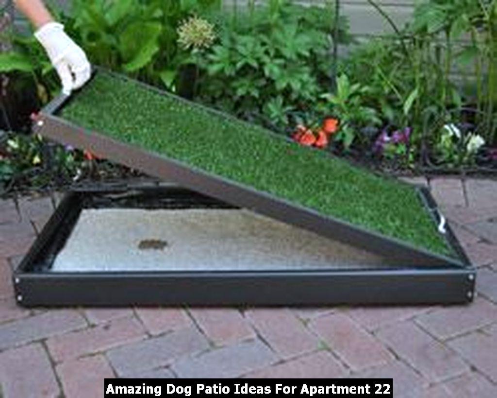 Amazing Dog Patio Ideas For Apartment 22