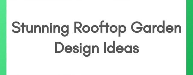 Stunning Rooftop Garden Design Ideas