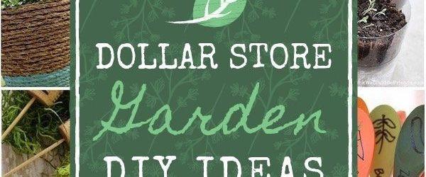 Dollar Tree Garden Ideas