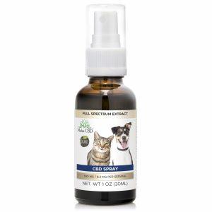CBD Pet Oil - MahaCbd