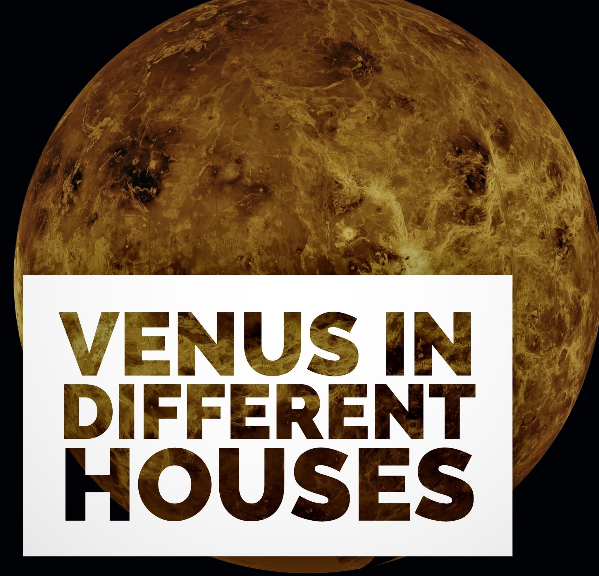 Venus in Different Houses | Know About 1st to 12th Houses
