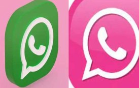 WhatsApp ला गुलाबी रंगात बदलण्याचा दावा करणाऱ्या 'मेसेज'मध्ये Virus, 'हॅक' होऊ शकतो तुमचा फोन, जाणून घ्या बचावाचे उपाय