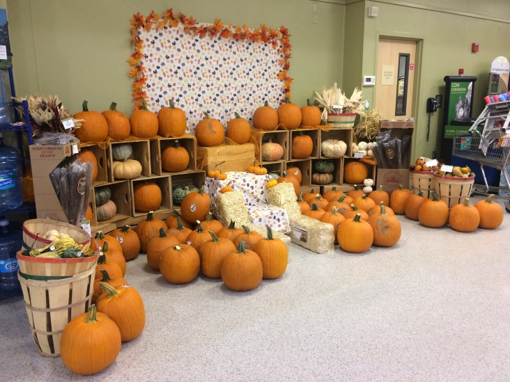 Pumpkins lined up at Publix, Deerwood