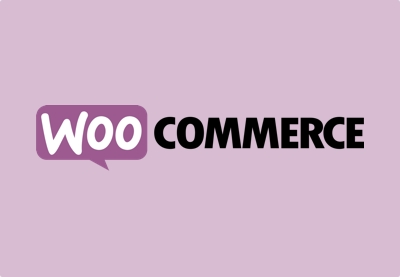 30+ Best Shipping & WooCommerce Pricing Plugins