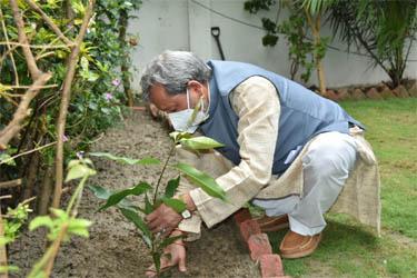 पर्यावरण दिवस पर मुख्यमंत्री तीरथ रावत ने अपने आवास में लगाया पौधा