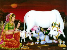 Lord Krishna With Cow-2