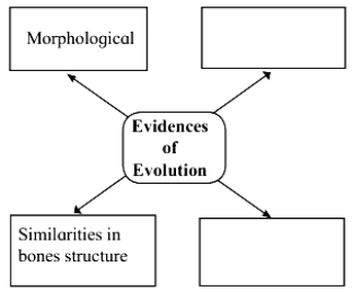 Maharashtra Board Class 10 Science Solutions Part 2 Chapter 1 Heredity and Evolution 1