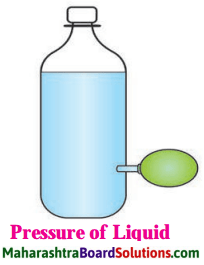 Maharashtra Board Class 8 Science Solutions Chapter 3 Force and Pressure 1