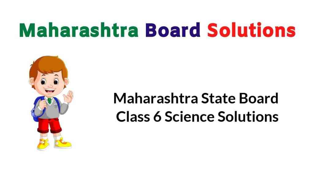 Maharashtra State Board Class 6 Science Solutions