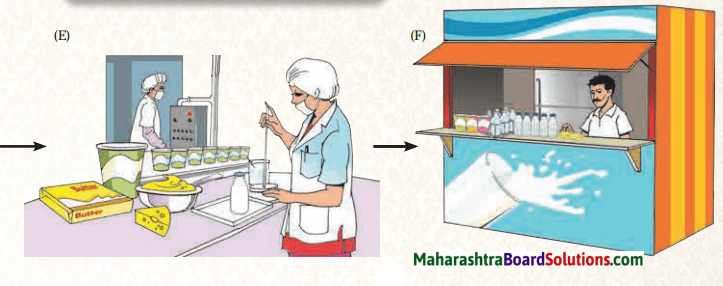 Maharashtra Board Class 6 Geography Solutions Chapter 10 Human Occupations 6