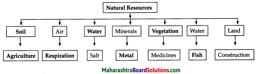 Maharashtra Board Class 6 Geography Solutions Chapter 8 Natural Resources 2