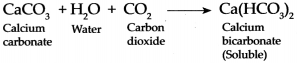 Maharashtra Board Class 9 Science Solutions Chapter 13 Carbon An Important Element 11