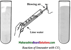 Maharashtra Board Class 9 Science Solutions Chapter 13 Carbon An Important Element 24