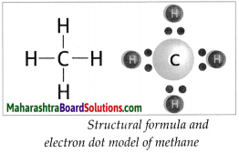 Maharashtra Board Class 9 Science Solutions Chapter 13 Carbon An Important Element 4