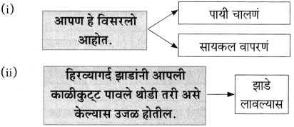 Maharashtra Board Class 10 Marathi Aksharbharati Solutions Chapter 7 फूटप्रिन्टस 30