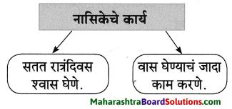 Maharashtra Board Class 8 Marathi Solutions Chapter 4 आपण सारे एक 21