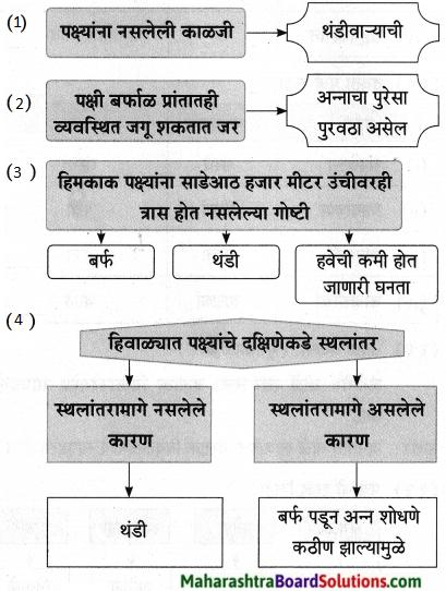 Maharashtra Board Class 9 Marathi Aksharbharati Solutions Chapter 11 आभाळातल्या पाऊलवाटा 23