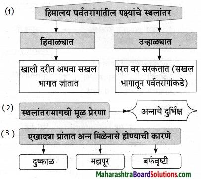Maharashtra Board Class 9 Marathi Aksharbharati Solutions Chapter 11 आभाळातल्या पाऊलवाटा 25