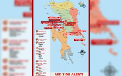Red tide alert still up in 13 Eastern Visayas bays