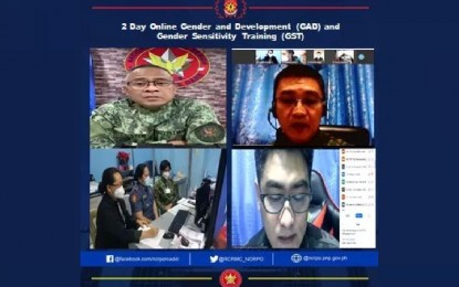 NCRPO holds GAD webinar to boost women empowerment