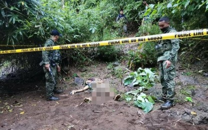 NPA terrorist dies in central Negros clash