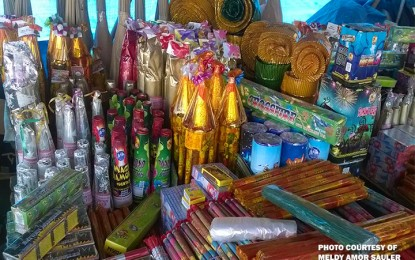 Palace: 1 year enough for firecracker makers to find new jobs