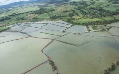 Floods damage over 1.6K hectares agri farms in NegOcc
