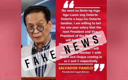 Panelo chides 'fakers' behind false comments attributed to him