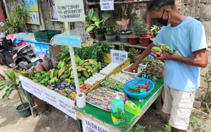 LGUs urged to link local biz to community pantry organizers