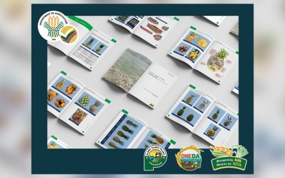 DA assists pineapple growers with new free illustrative guide