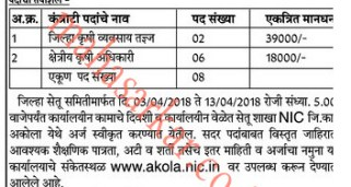 Akola Bharti Archives - Page 2 of 3 - Mahasarkar