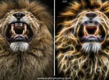 Efek Glowing Animals Photoshop