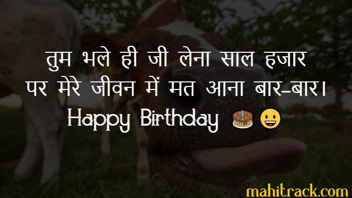 Top 35 Funny Birthday Wishes In Hindi With Images