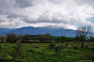 Snow on the Ida / Karlı İda