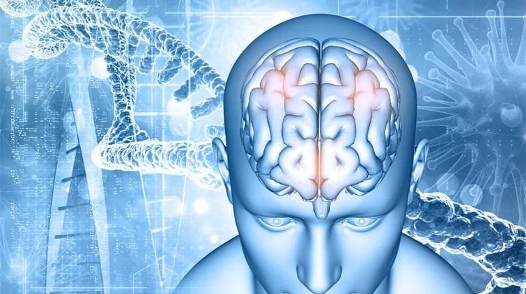 Tumor Otak Gejala, Jenis, dan Penangannya