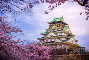 Best things to do Osaka
