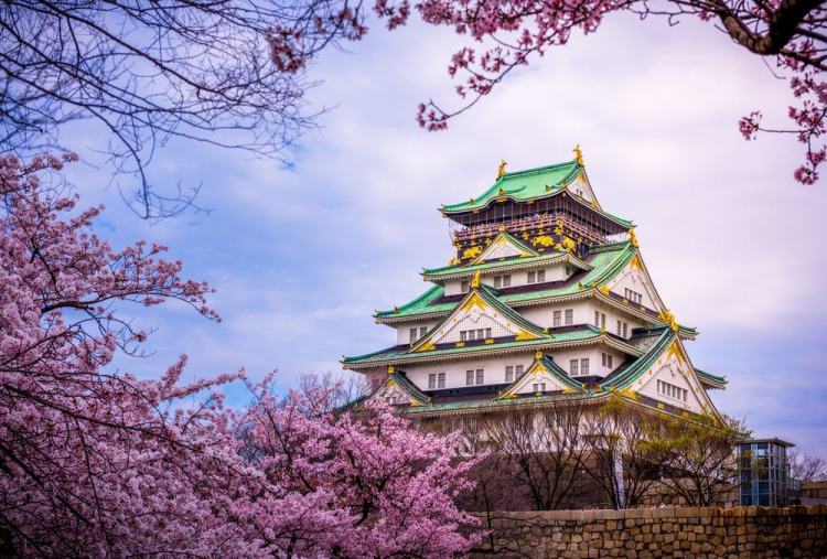 Best things to do Osaka