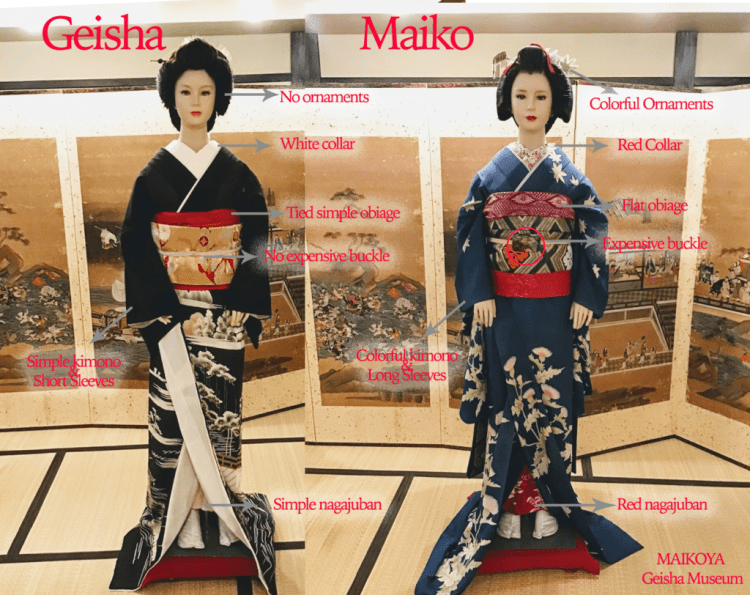 Maiko Geisha Geiko Differences at Maikoya Geisha Museum